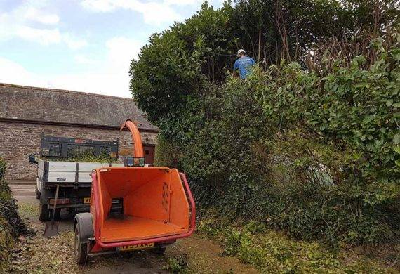 coast and country hedge trimming machine